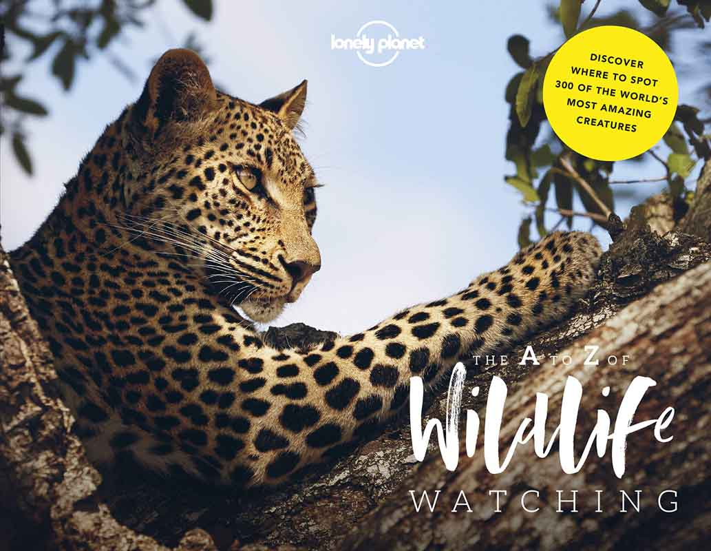 A Z OF WILDLIFE WATCHING