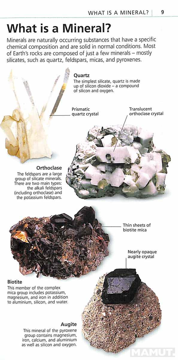 WHATS THAT ROCK OR MINERAL